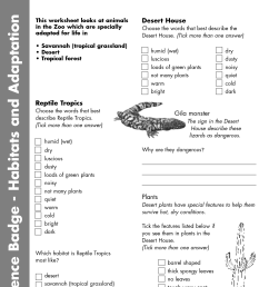 Animal Adaptations Worksheets Grade 9   Printable Worksheets and Activities  for Teachers [ 1754 x 1240 Pixel ]