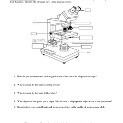 Microscope Diagram Unlabeled Tool To Draw Sequence 17 Best Images Of Blank Worksheet
