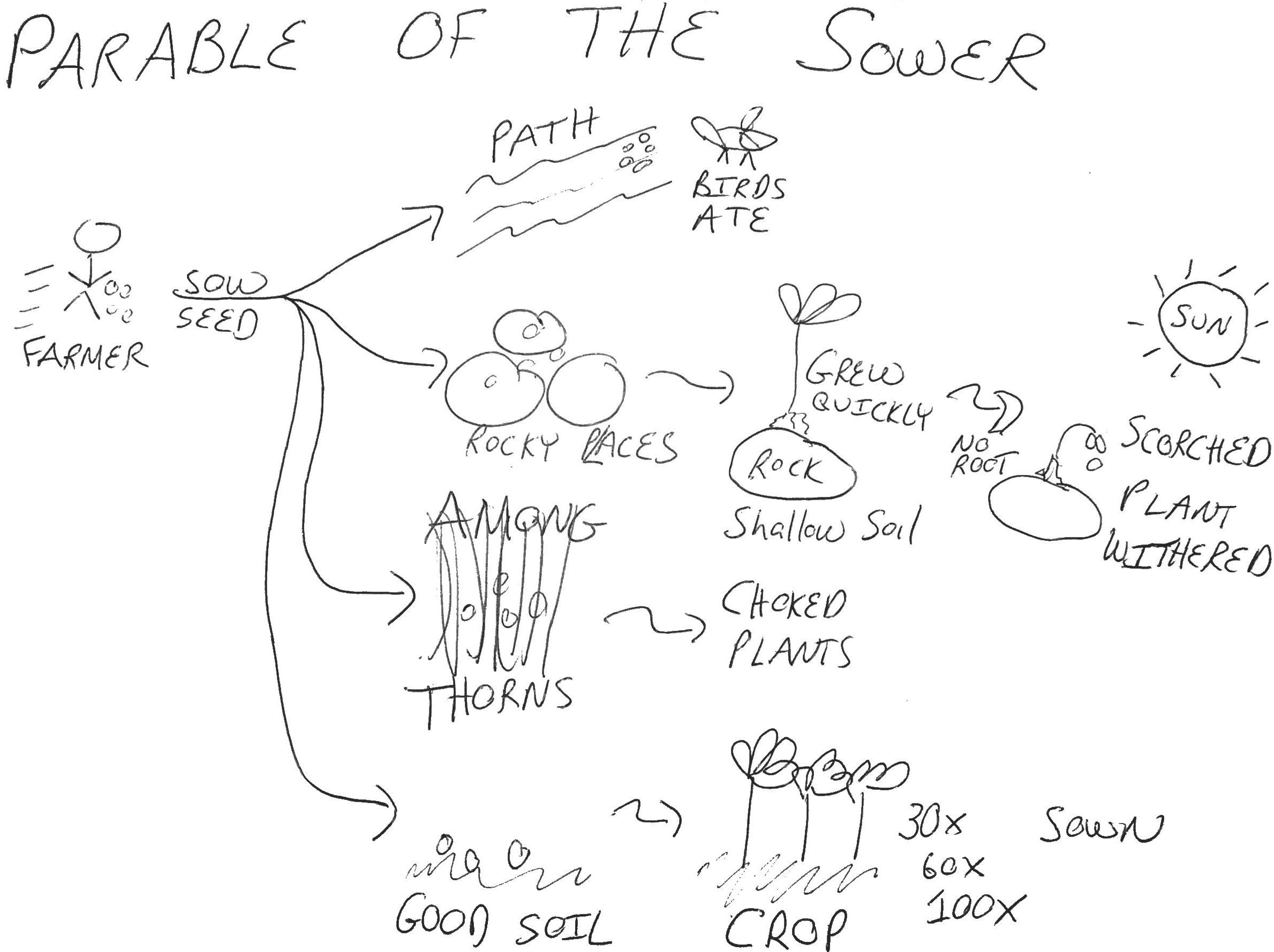 17 Best Images Of Parable Of The Sower Worksheets