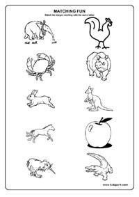 16 Best Images of Multisyllabic Words Worksheets 5th Grade