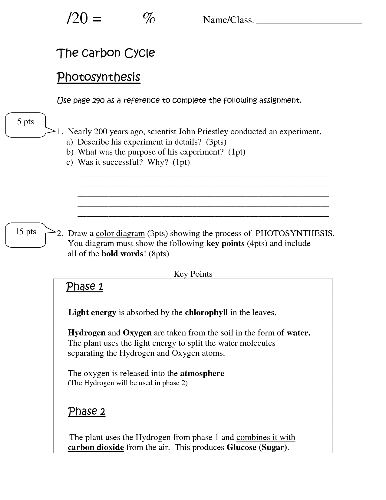 10 Best Images Of Photosynthesis Worksheets For Fourth