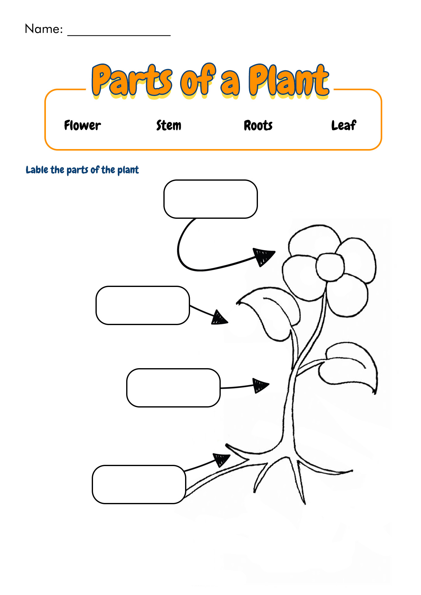 14 Best Images Of Plant Worksheets For Grade 1