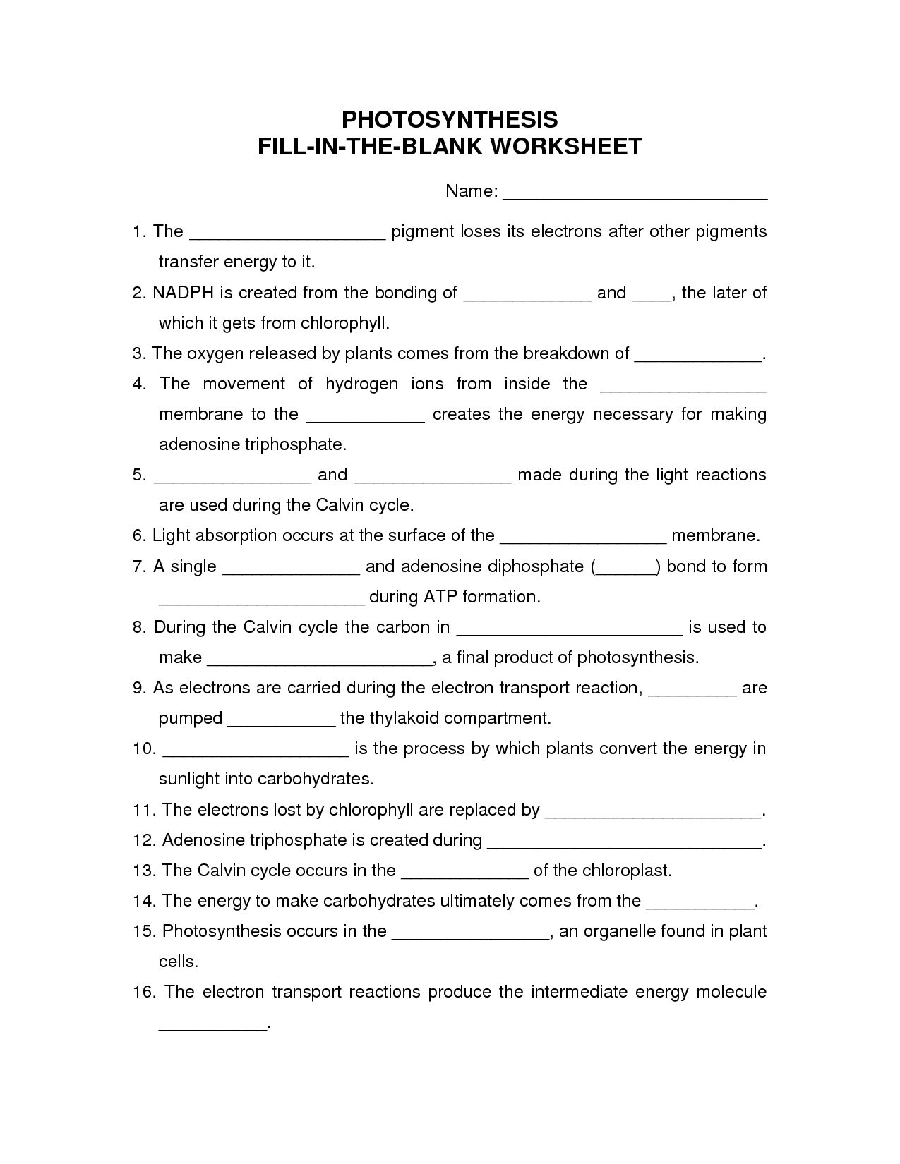 16 Best Images Of Fill In Blank Worksheets
