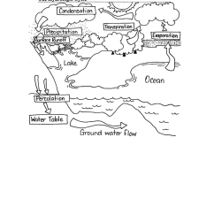 Water Cycle Diagram Blank Johnson Controls Fec Wiring 9 Best Images Of Worksheets Words