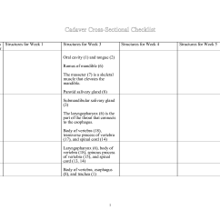 Brain Structures And Functions Diagram Worksheet Arc 3700 Switch Panel Wiring 11 Best Images Of