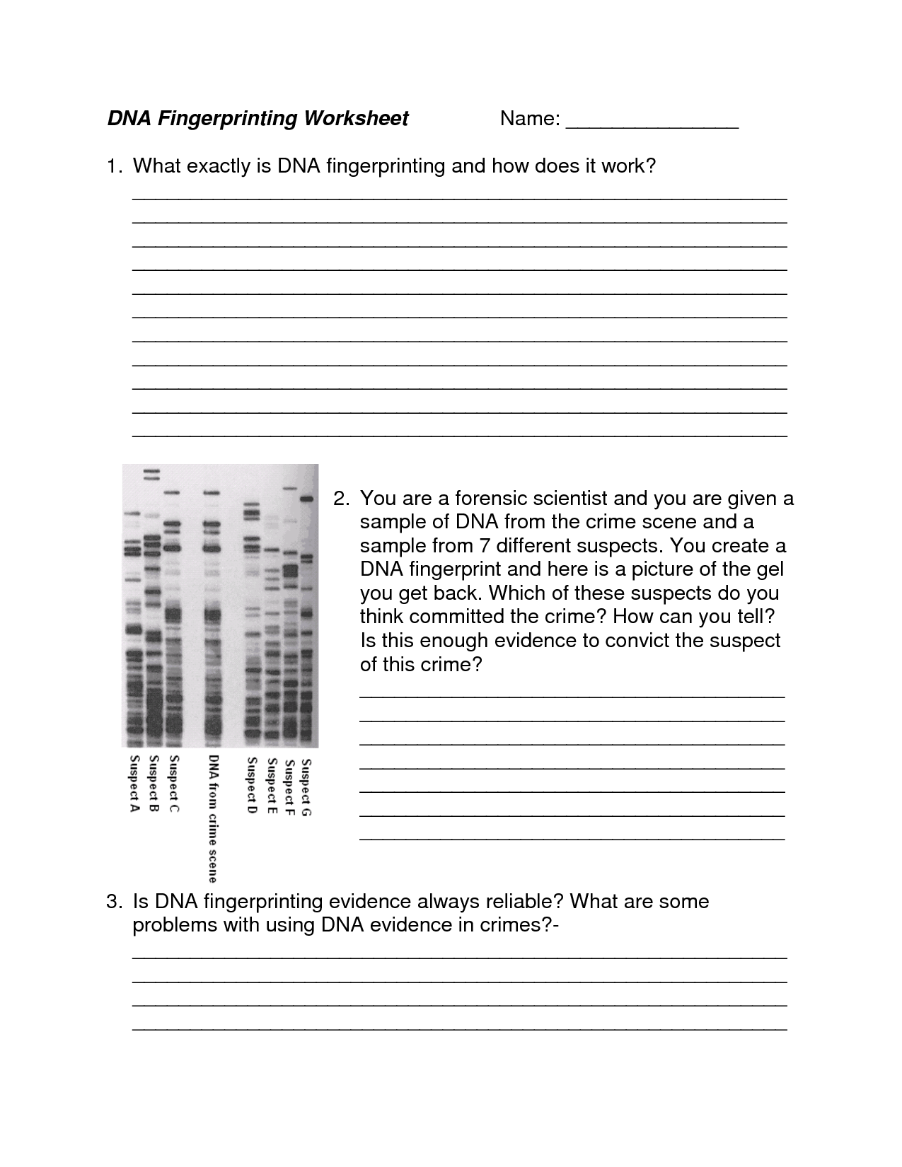 Biotechnology Worksheet Answers