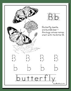 13 Best Images of Free Butterfly Worksheets Kindergarten