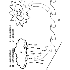 Water Cycle Diagram Blank Jeep Cj Dash Wiring 13 Best Images Of About The Worksheet Free