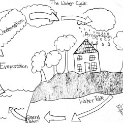 Water Cycle Diagram Blank Spine Function 11 Best Images Of Worksheets Middle School