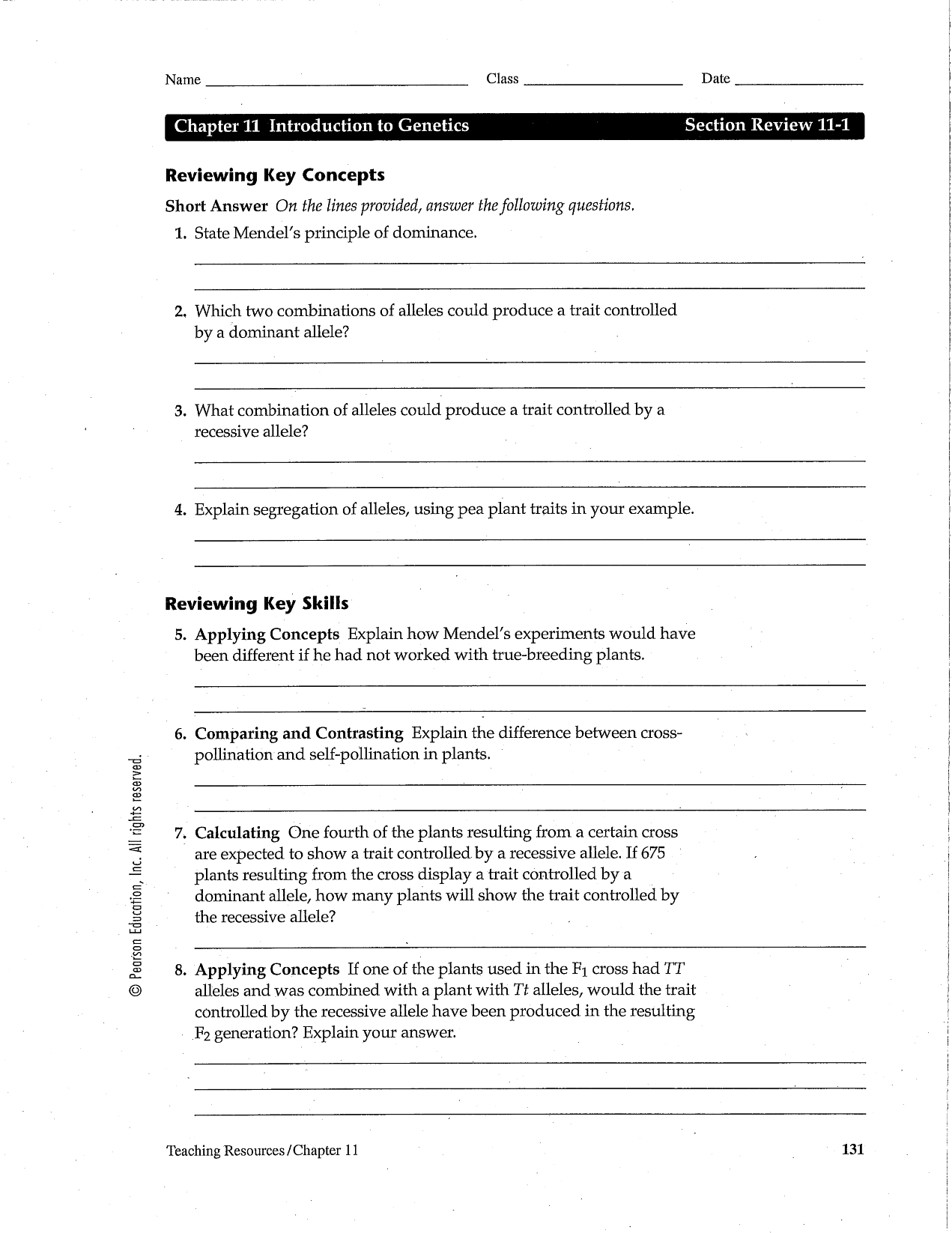 14 Best Images Of Dna And Genes Chapter 11 Worksheet Unit 4