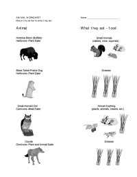 12 Best Images of Animal Habitats First Grade Worksheets
