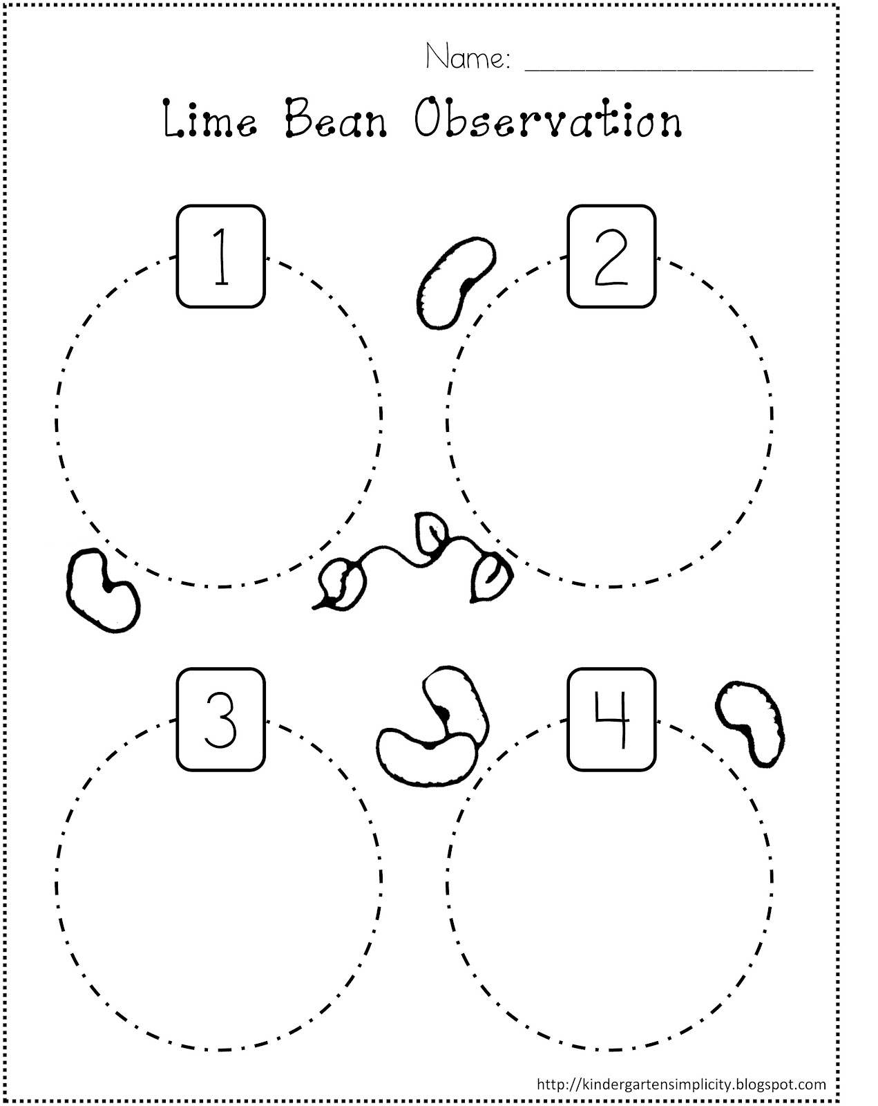 14 Best Images Of Preschool Plant Life Cycle Worksheet