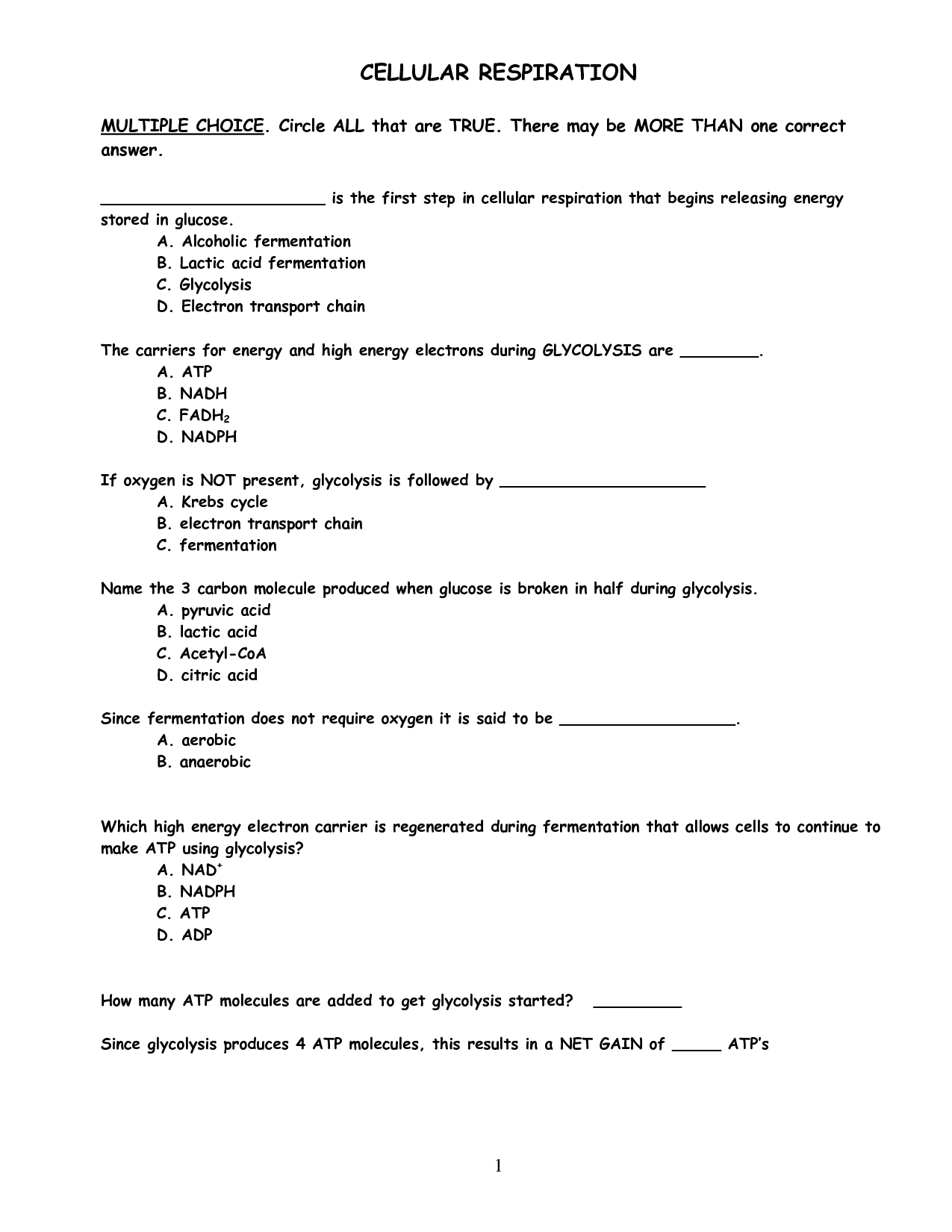 14 Best Images Of Photosynthesis Worksheets With Answer Key
