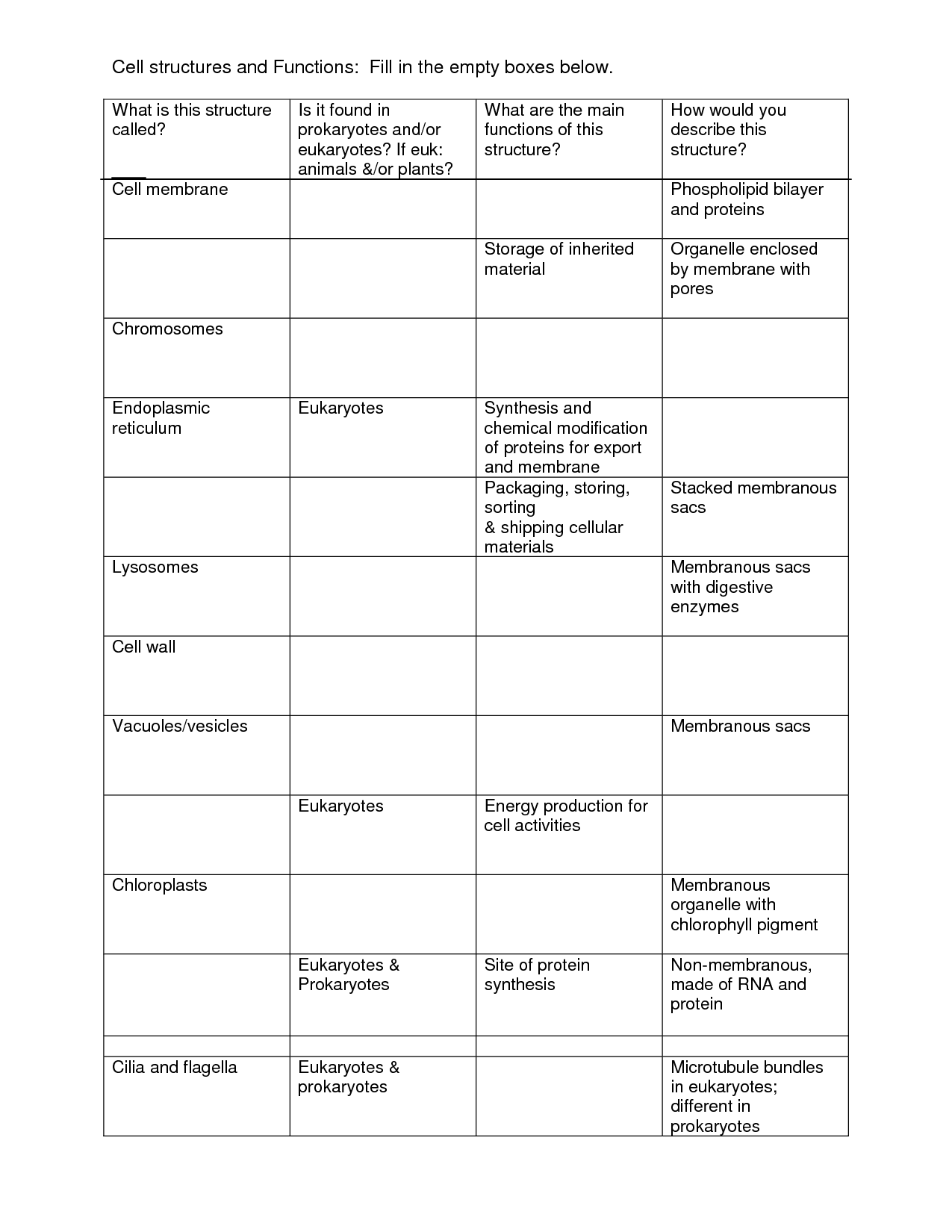 28 Cell Structure And Function Skills Worksheet