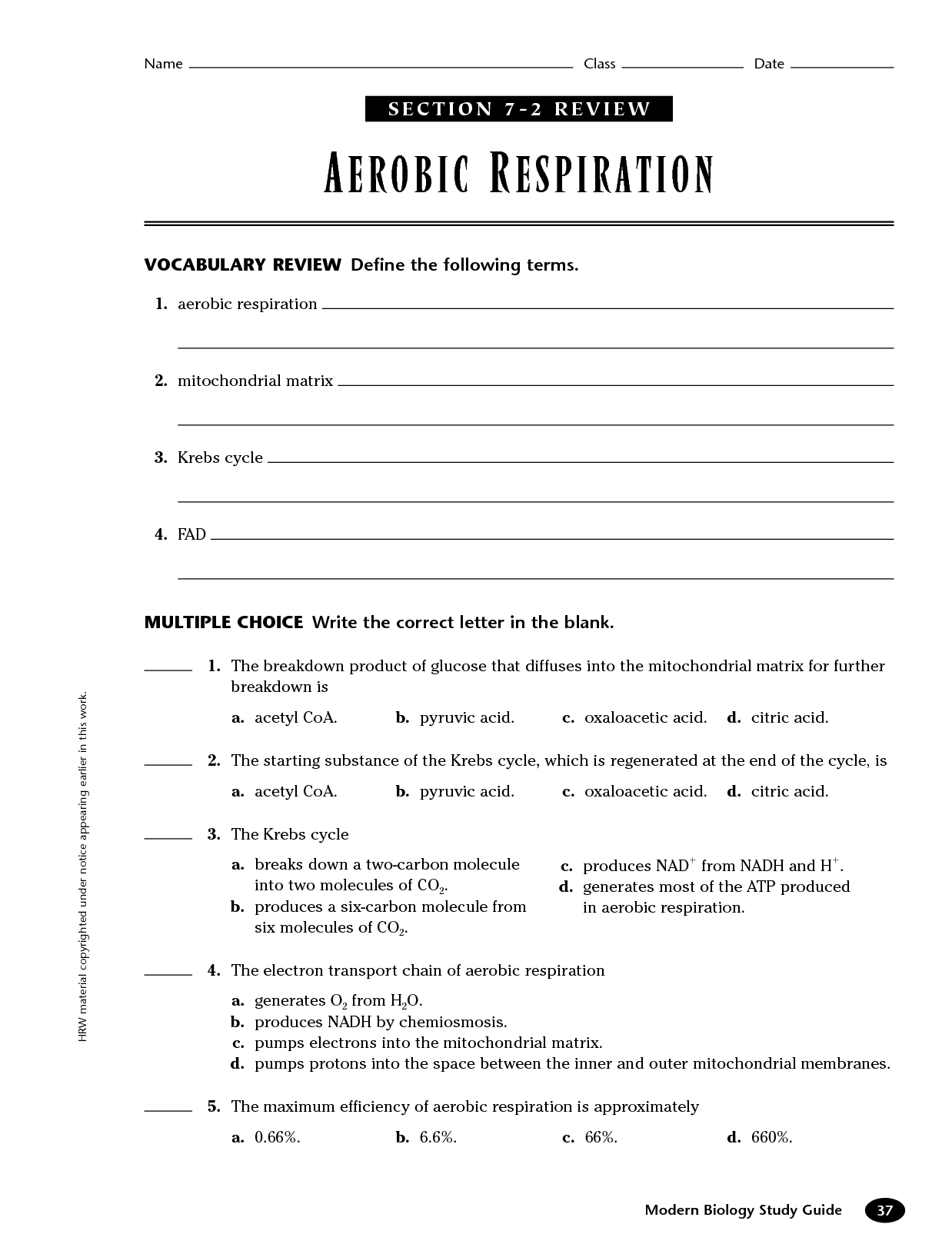 12 Best Images Of Aerobic Respiration Worksheet Answer Key