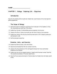 16 Best Images of Introduction To Energy Worksheet Answer