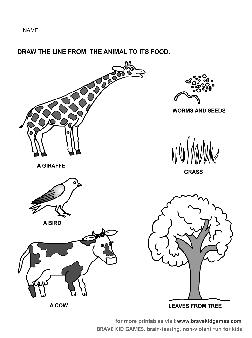 14 Best Images Of Mammal Worksheets For Kindergarten