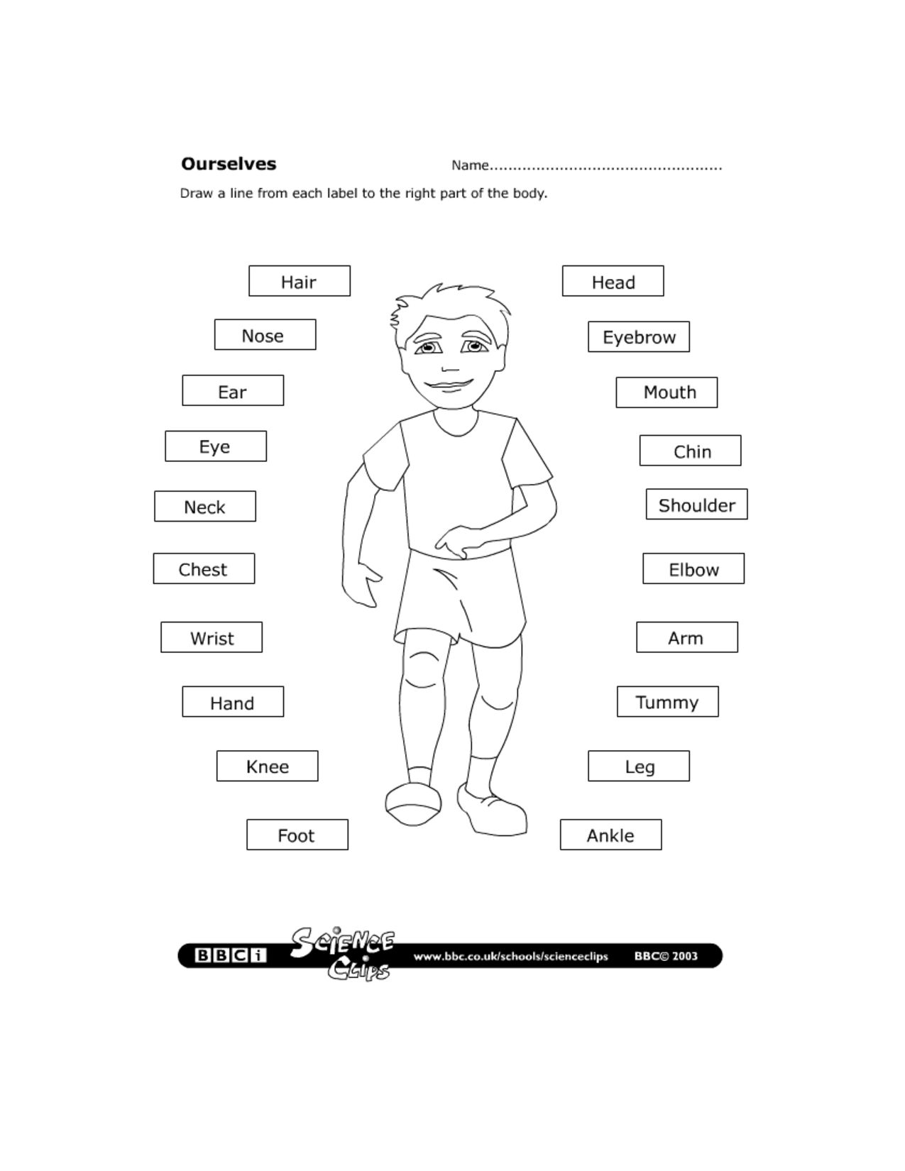 14 Best Images Of Kids Healthy Lifestyle Worksheet