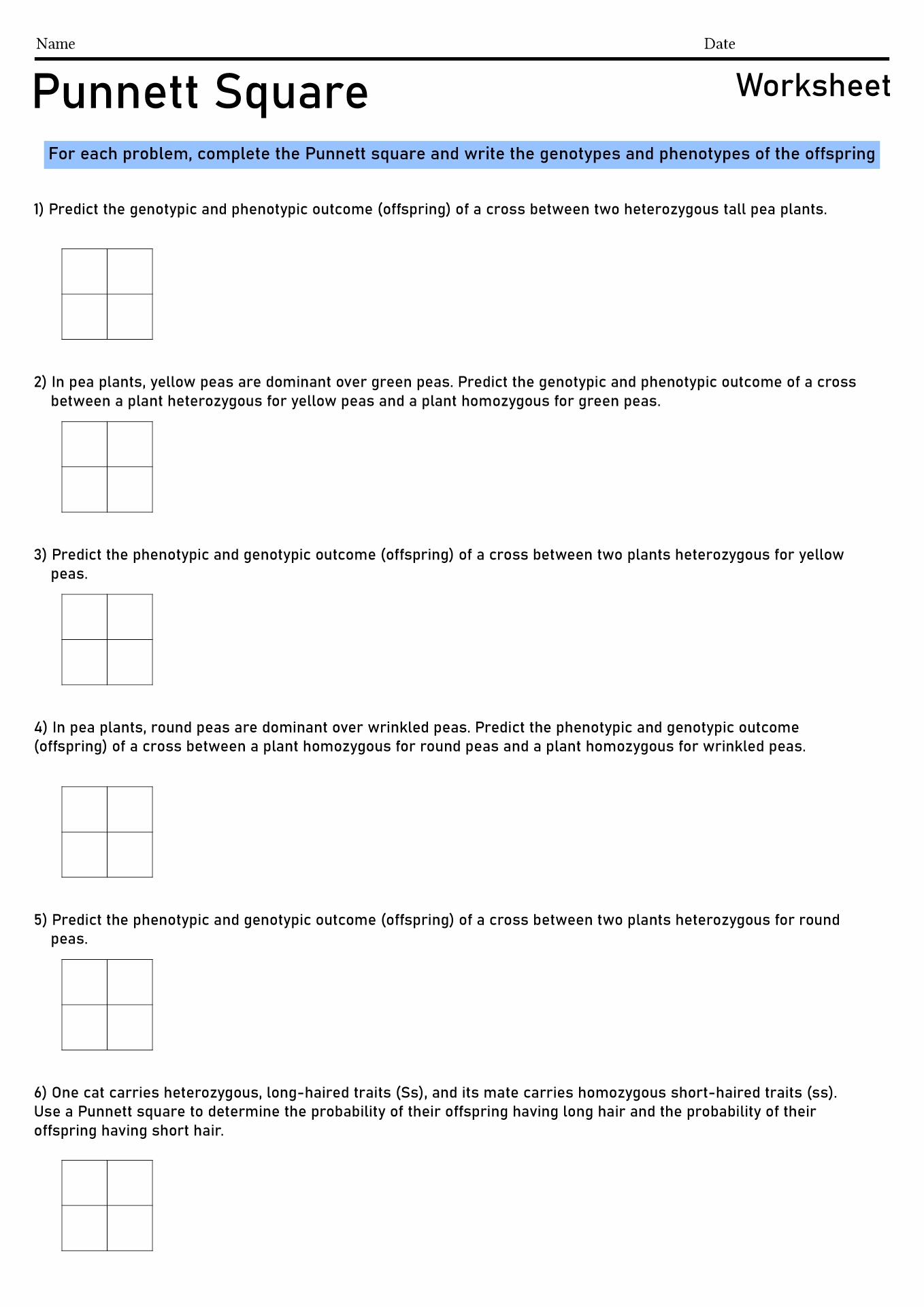 Pea Plant Worksheet