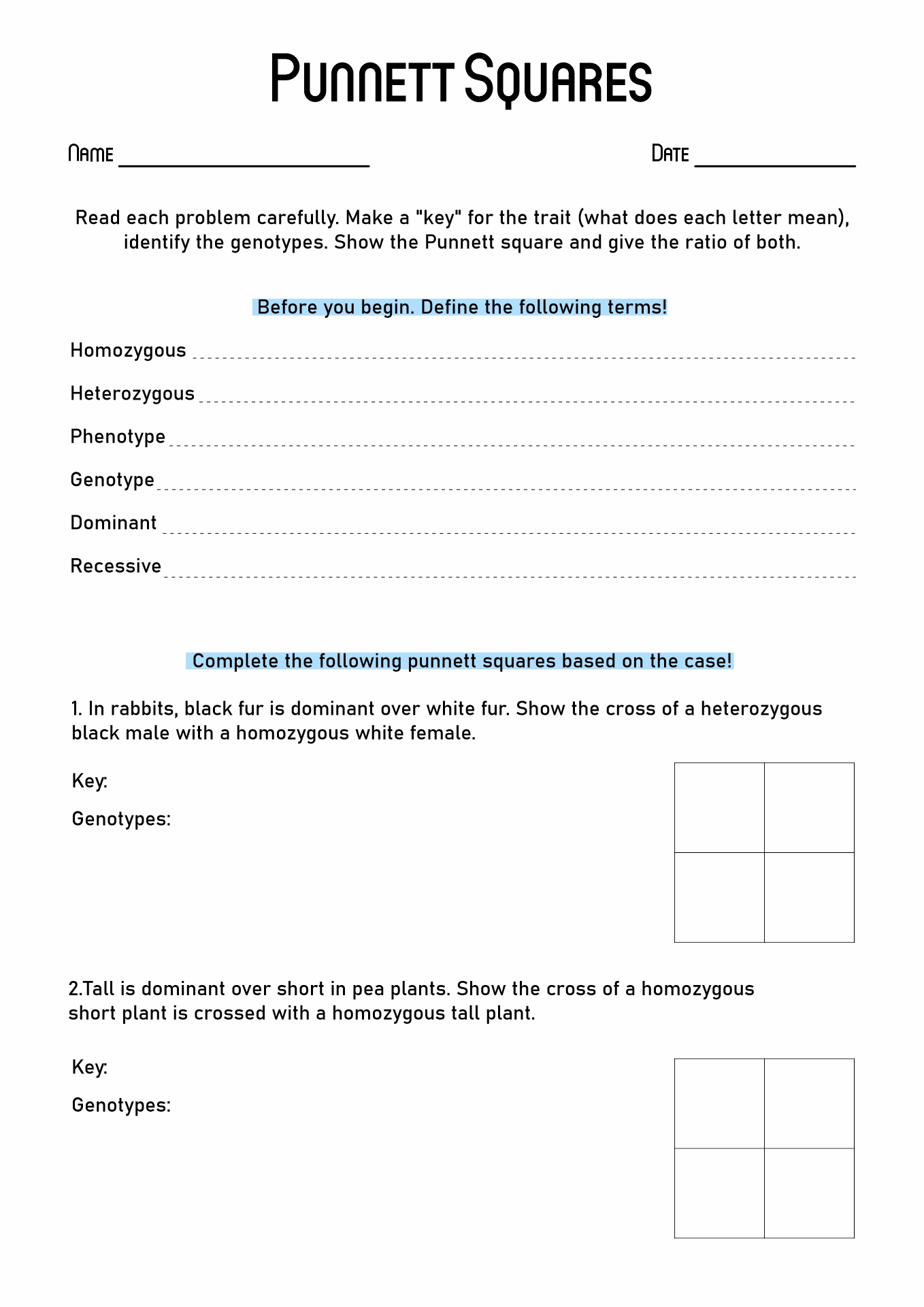 15 Best Images Of Punnett Square Worksheet Answer Key