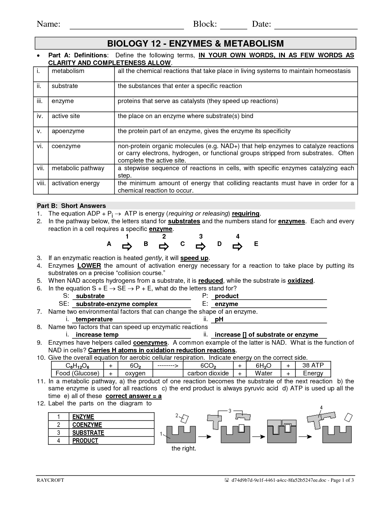 20 Best Images Of Enzymes And Chemical Reactions Worksheet