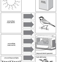 Mitosis Worksheet Diagram Curiosity Rover 12 Best Images Of Energy Diagrams - Types Transfer Worksheet, Mlm ...