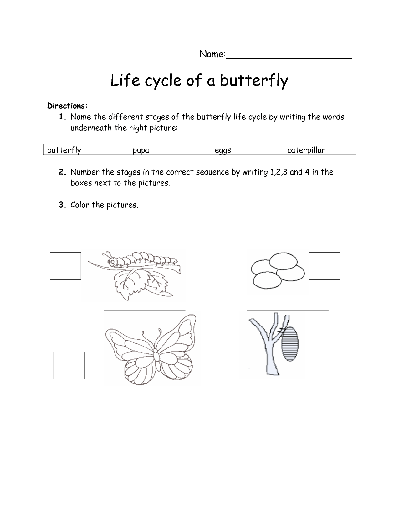 15 Best Images Of Butterfly Life Cycle Sequence Worksheet