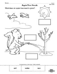 12 Best Images of Super Teacher Worksheets And Answer Keys