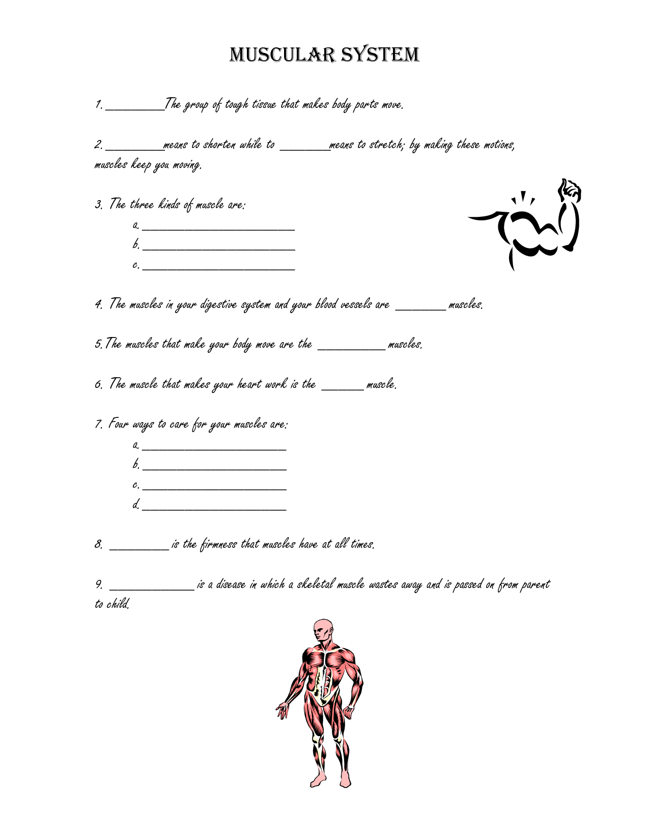 16 Best Images Of How Muscles Work Worksheet