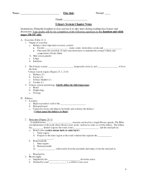 16 Best Images of Muscle Worksheets For Middle School ...
