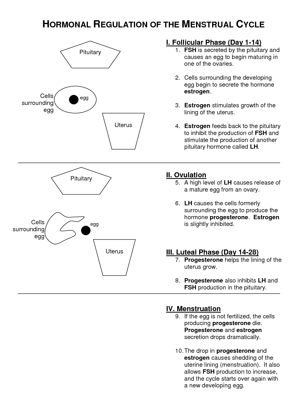 13 Best Images Of Depression Cycle Worksheet
