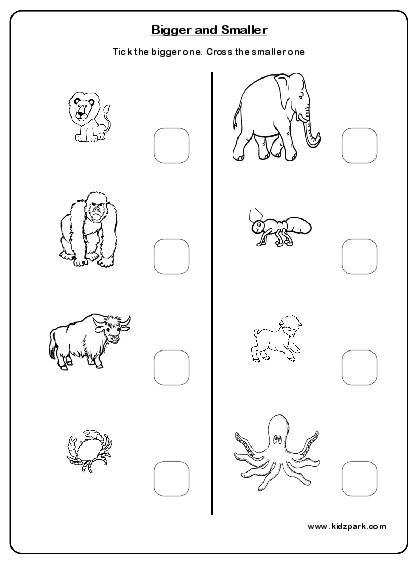 15 Best Images of High Low Worksheet For Kindergarten