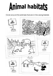 13 Best Images of Animals And Their Habitats Worksheets