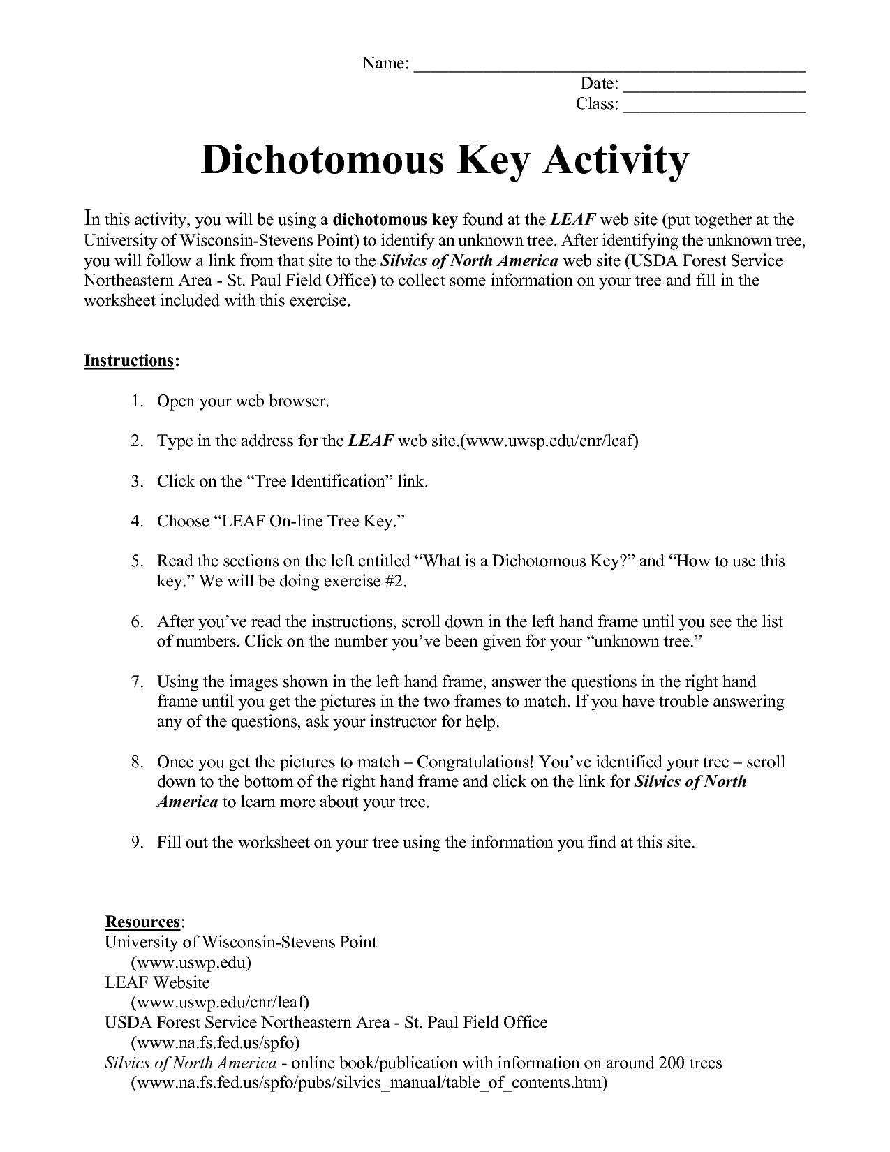 Blank Dichotomous Key Worksheet