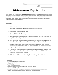 Dichotomous Key Worksheets - Checks Worksheet