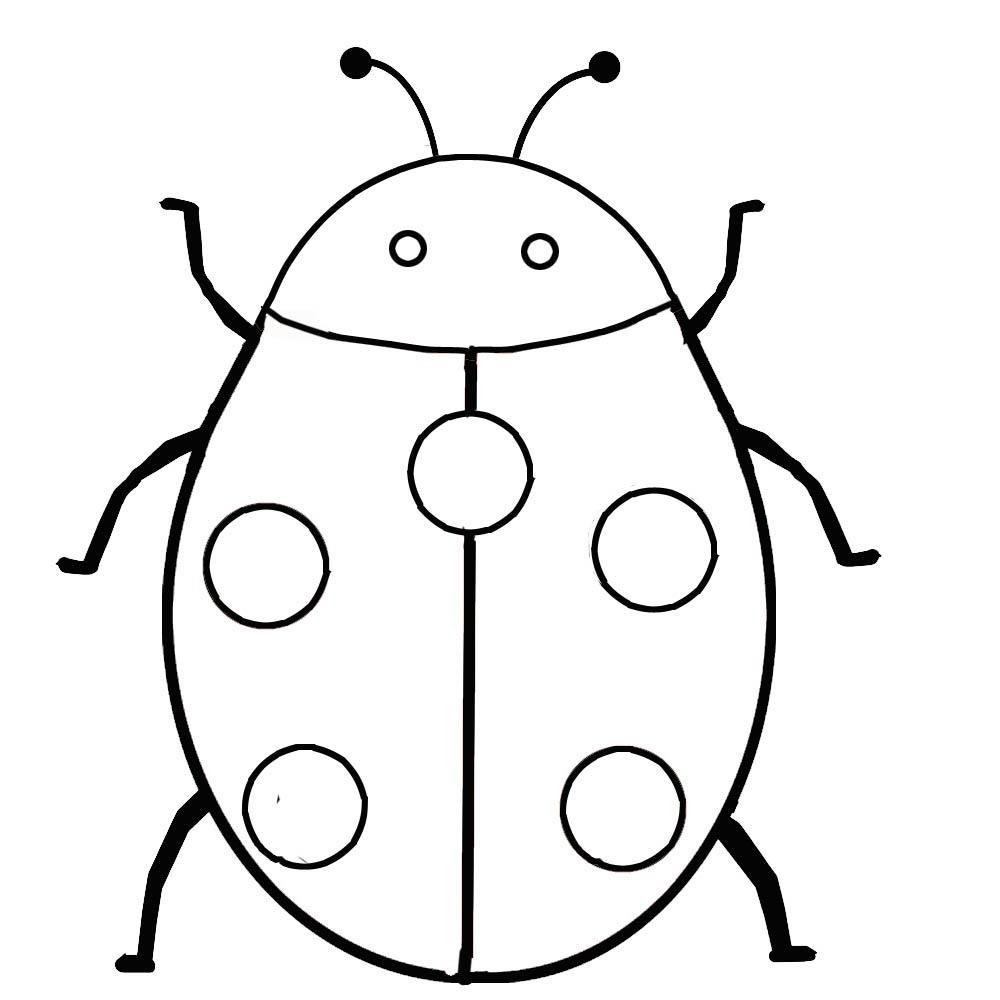 11 Best Images of Ladybug Worksheets For Kindergarten
