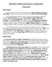 16 Best Images of Carbohydrate Worksheet And Answers ...