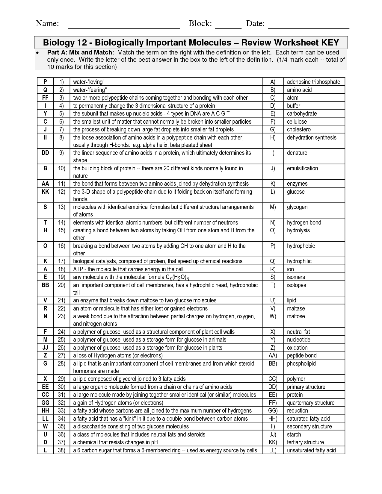 14 Best Images Of Biological Molecules Worksheet Answers