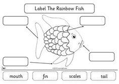 13 Best Images of Rainbow Worksheets For Kindergarten