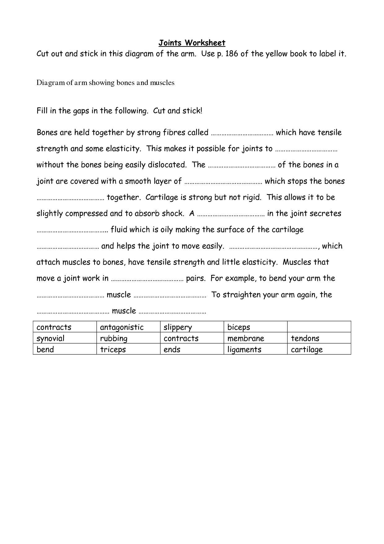 Sheep Heart Dissection Lab Worksheet Answers Good