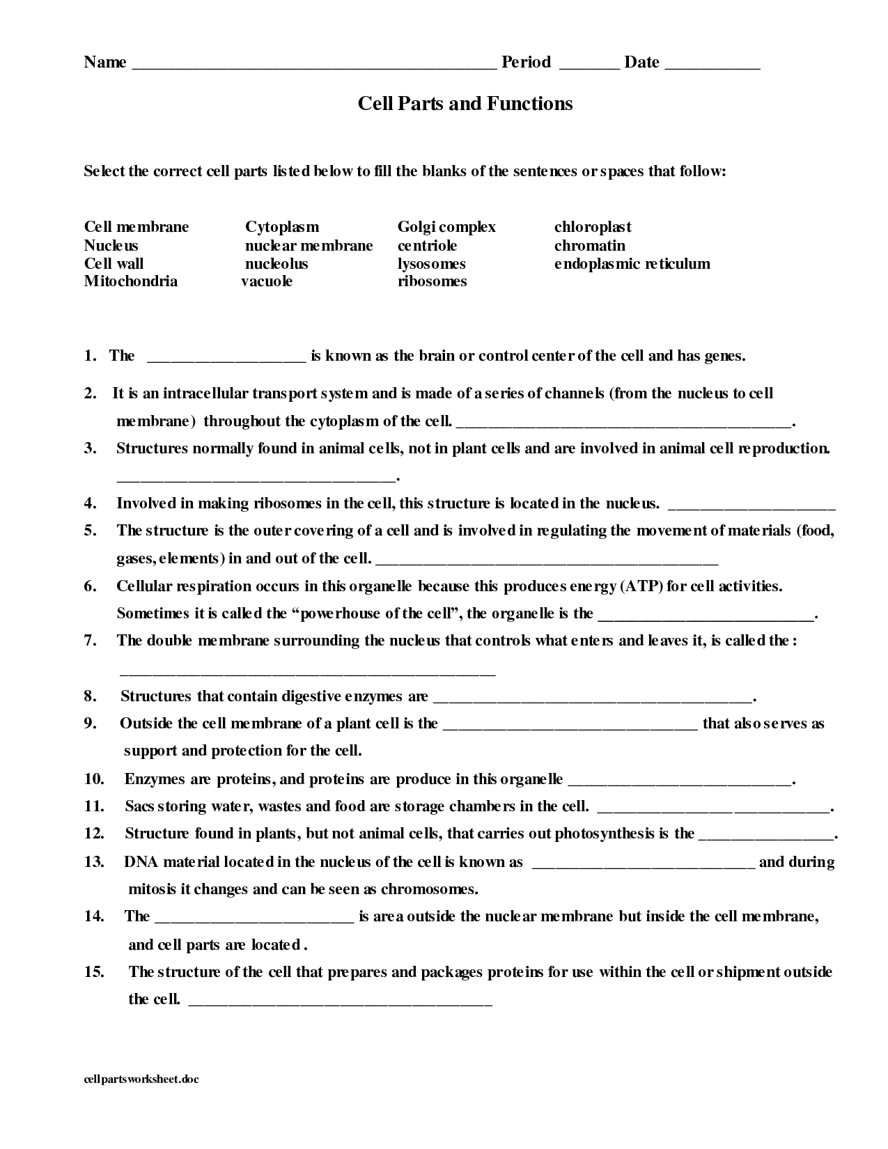 fill in the blank animal cell diagram allen bradley 4 pin connector wiring 16 best images of parts and functions worksheet