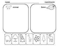 13 Best Images of Classification Worksheets Preschool