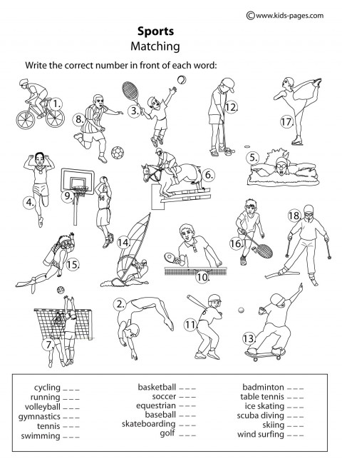 13 Best Images of Worksheets Physical Education Exercise