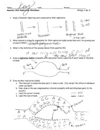 15 Best Images of Finding Nemo Worksheets With Answer Key ...