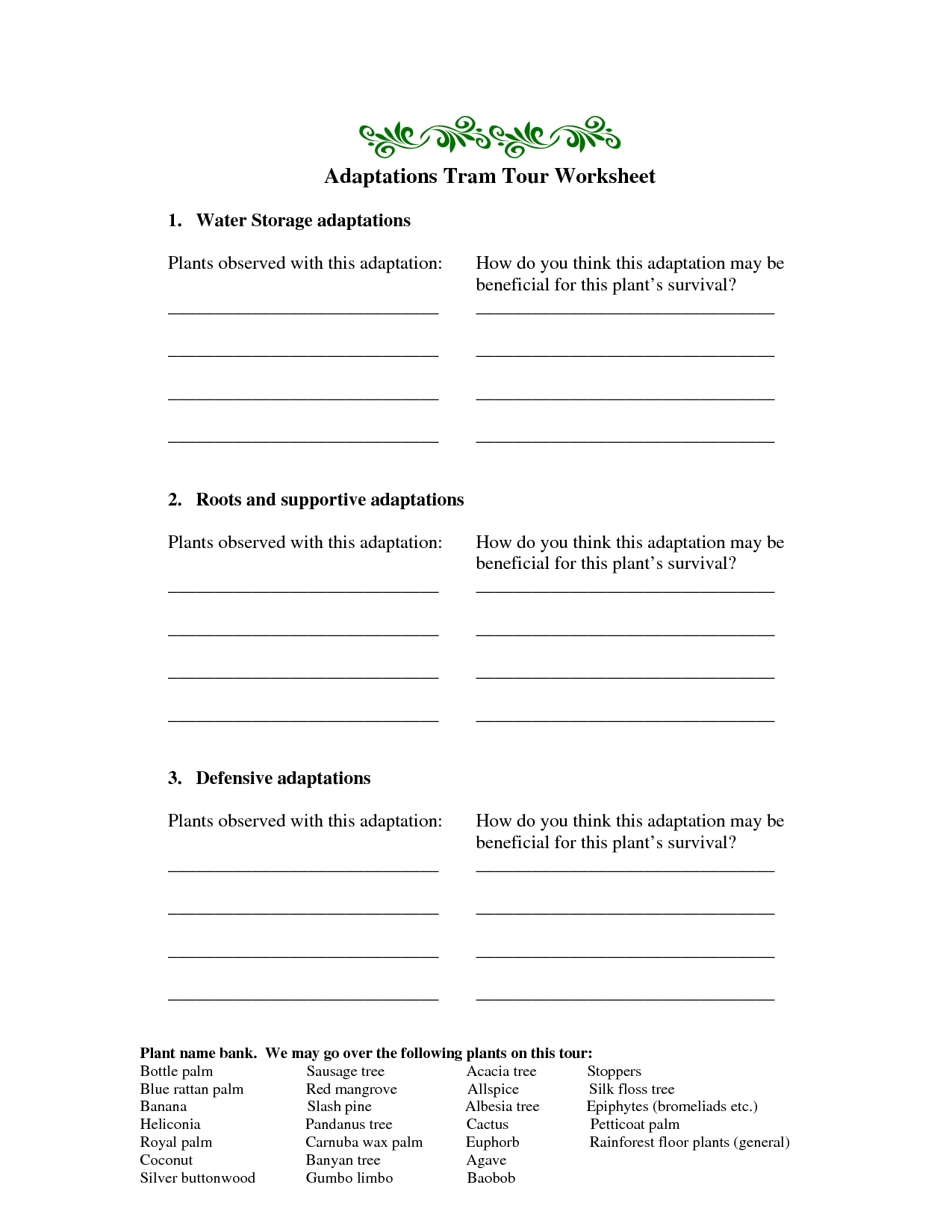 10 Best Images Of Plant Roots Worksheet