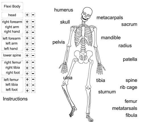 10 Best Images of Human Skeleton Bones Worksheet