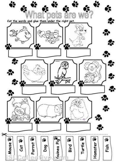 13 Best Images of Wild Animal Cut And Paste Worksheets