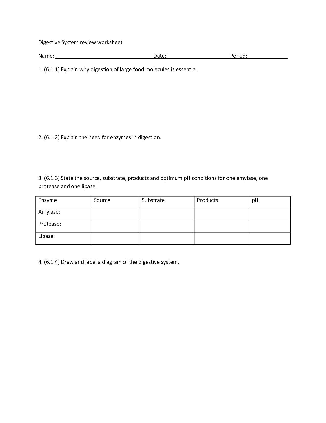 35 Ap Biology Enzymes At Work Worksheet Answers
