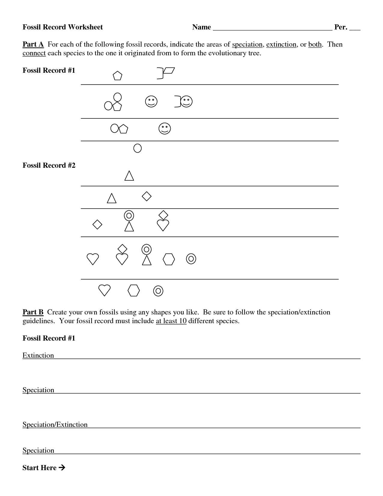 Dating The Fossil Record Worksheet Answers