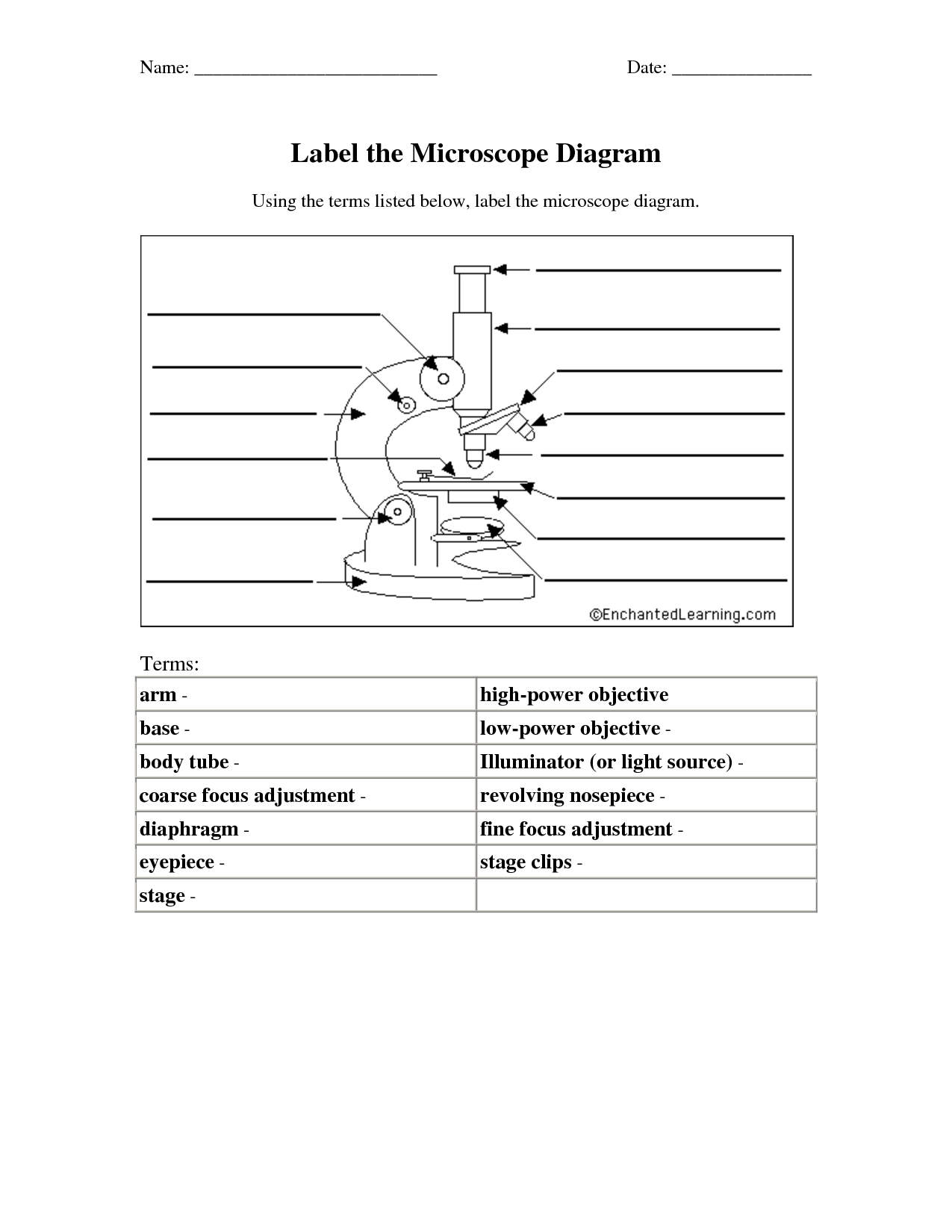 blank microscope diagram to label 2003 honda civic wiring 11 best images of light worksheet